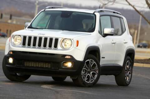 2017 Jeep Renegade for sale at MGM Motors LLC in De Soto KS