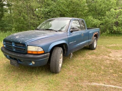 2002 Dodge Dakota for sale at Expressway Auto Auction in Howard City MI