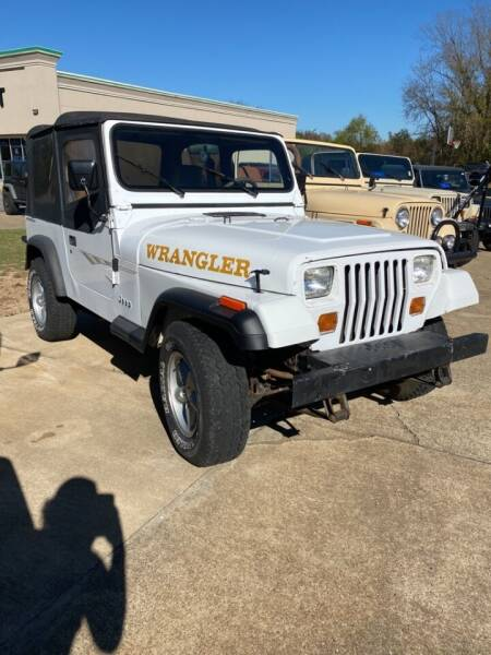1993 Jeep Wrangler for sale at PITTMAN MOTOR CO in Lindale TX