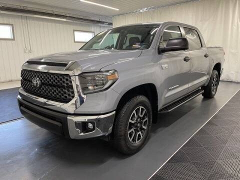 2020 Toyota Tundra for sale at Monster Motors in Michigan Center MI
