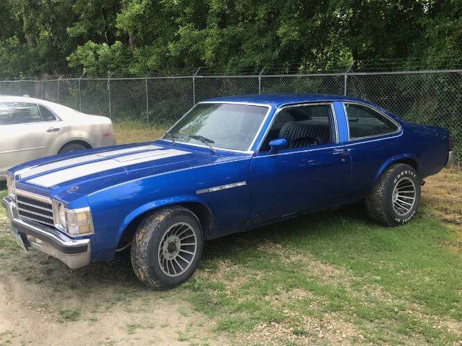 1978 Buick Skylark for sale in Cadillac, MI