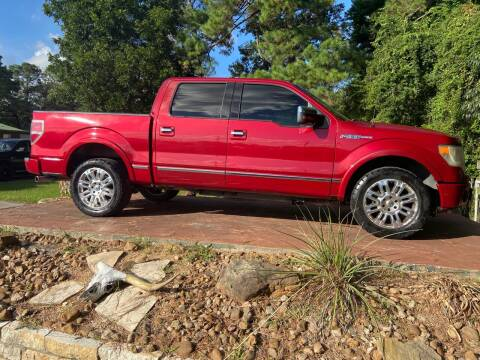 2010 Ford F-150 for sale at Texas Truck Sales in Dickinson TX
