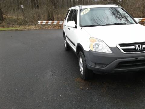 2004 Honda CR-V for sale at ELIAS AUTO SALES in Allentown PA