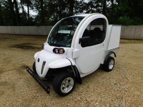 2013 GEM Polaris GEM E2 for sale at Commercial Vehicle Sales in Ponchatoula LA