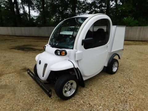 2013 GEM Polaris GEM E2 for sale at Commercial Vehicle Sales in Ponchatoula LA