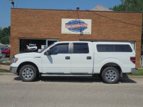 2010 Ford F-150 for sale at Eyler Auto Center Inc. in Rushville IL