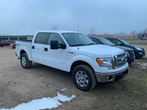 2014 Ford F-150 for sale at Yachs Auto Sales and Service in Ringle WI