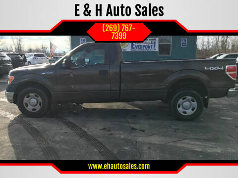 2009 Ford F-150 for sale at E & H Auto Sales in South Haven MI