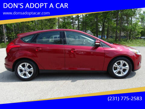 2013 Ford Focus for sale at DON'S ADOPT A CAR in Cadillac MI