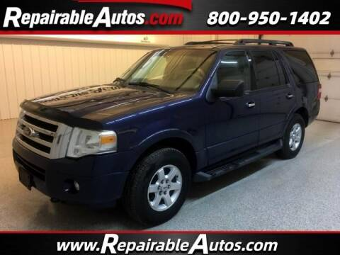 2010 Ford Expedition for sale at Ken's Auto in Strasburg ND