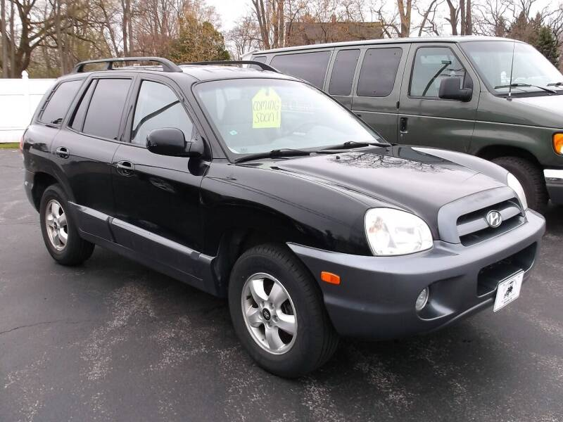 2005 Hyundai Santa Fe for sale at Victorian City Car Port INC in Manistee MI