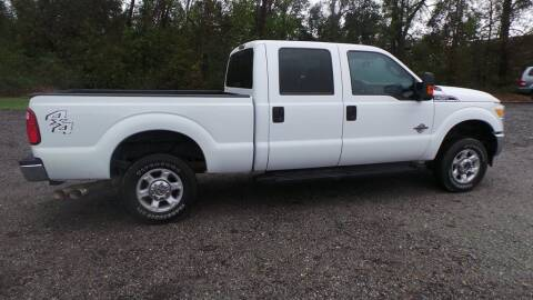 2015 Ford F-250 Super Duty for sale at action auto wholesale llc in Lillian AL