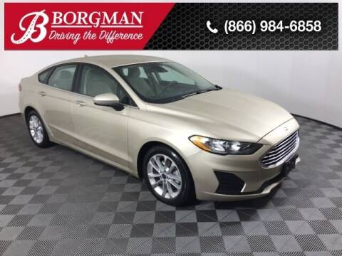2019 Ford Fusion Hybrid for sale at BORGMAN OF HOLLAND LLC in Holland MI
