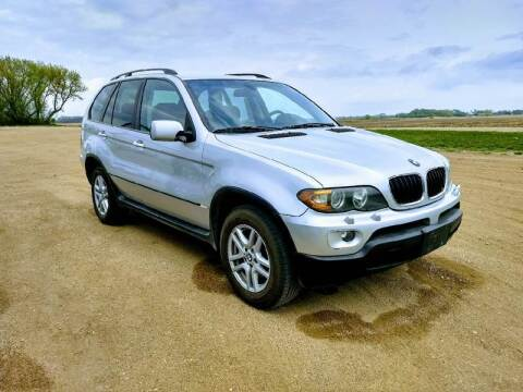 2005 BMW X5 for sale at RDJ Auto Sales in Kerkhoven MN