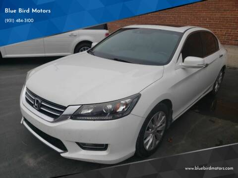 2013 Honda Accord for sale at Blue Bird Motors in Crossville TN