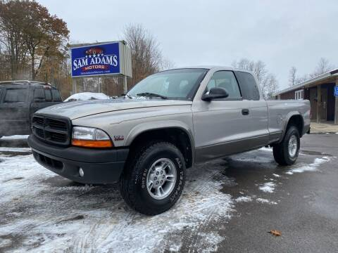 1999 Dodge Dakota for sale at Sam Adams Motors in Cedar Springs MI