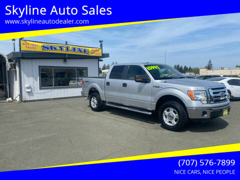 2010 Ford F-150 for sale at Skyline Auto Sales in Santa Rosa CA