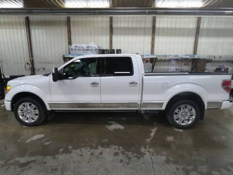 2012 Ford F-150 for sale at Alpha Auto - Mitchell in Mitchel SD