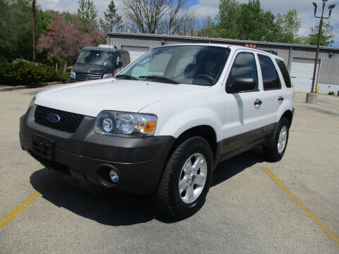 2007 Ford Escape for sale at Triangle Auto Sales in Elgin IL