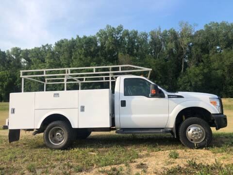 2012 Ford F-350 Super Duty for sale at Triple R Sales in Lake City MN