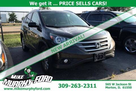2014 Honda CR-V for sale at Mike Murphy Ford in Morton IL