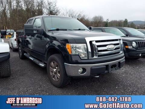 2009 Ford F-150 for sale at Jeff D'Ambrosio Auto Group in Downingtown PA