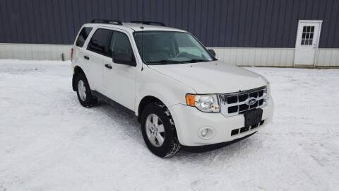 2010 Ford Escape for sale at RS Motors in Falconer NY