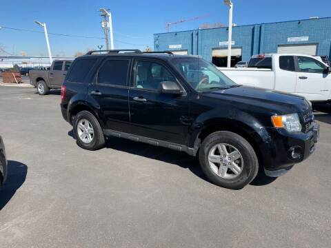 2012 Ford Escape Hybrid for sale at Major Car Inc in Murray UT