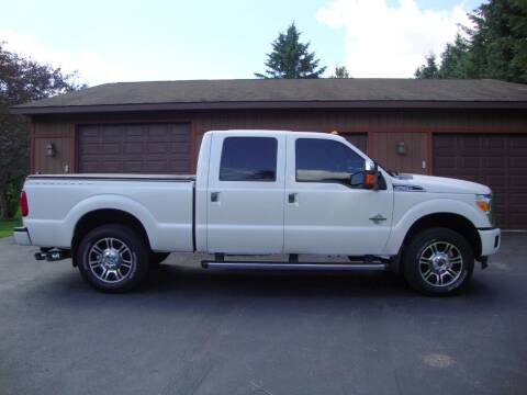 2016 Ford F-250 Super Duty for sale at G and G AUTO SALES in Merrill WI