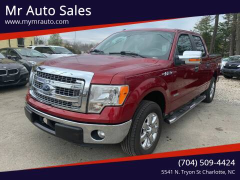 2013 Ford F-150 for sale at Mr Auto Sales in Charlotte NC