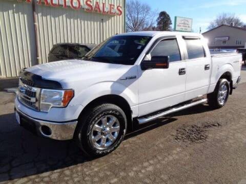2014 Ford F-150 for sale at De Anda Auto Sales in Storm Lake IA