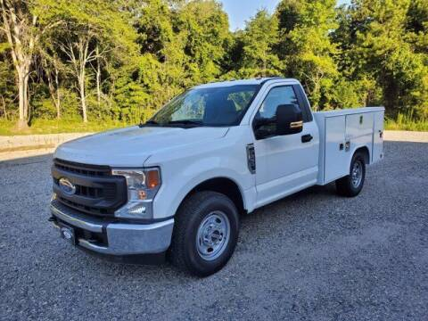 2020 Ford F-250 Super Duty for sale at Loganville Ford Fleet and Commercial Sales in Loganville GA