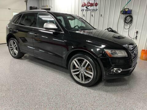 2015 Audi SQ5 for sale at D-Cars LLC in Zeeland MI