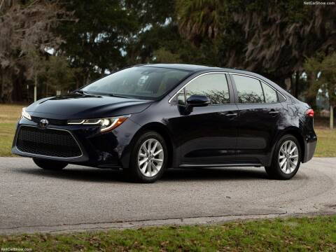 2020 Toyota Corolla for sale at Xclusive Auto Leasing NYC in Staten Island NY