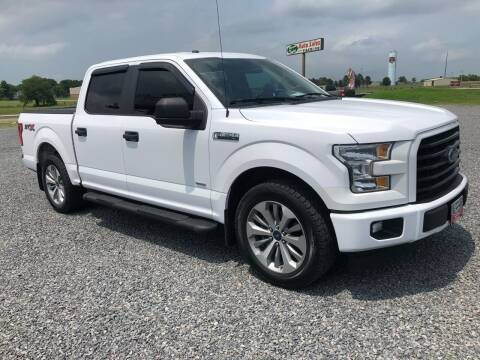 2017 Ford F-150 for sale at RAYMOND TAYLOR AUTO SALES in Fort Gibson OK