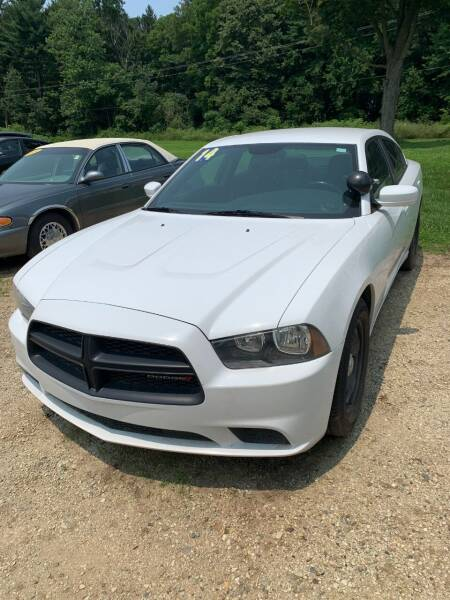 2014 Dodge Charger for sale at Hillside Motor Sales in Coldwater MI