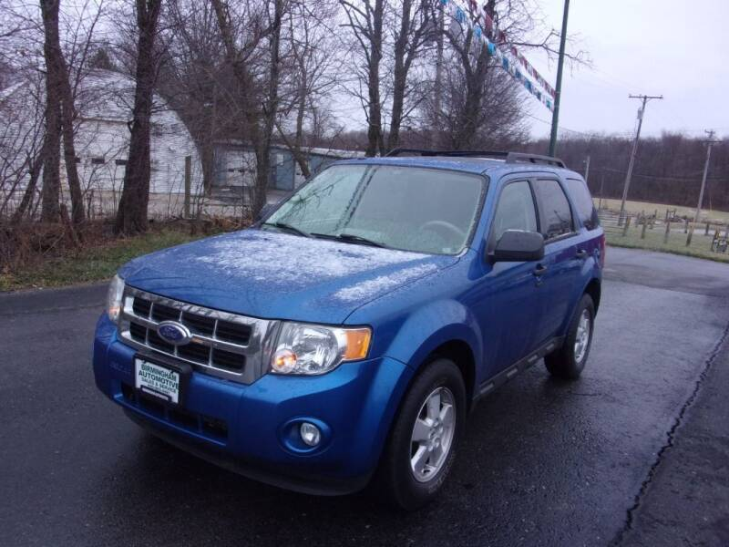 2011 Ford Escape for sale at Birmingham Automotive in Birmingham OH