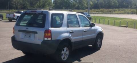2005 Ford Escape for sale at VICTORY LANE AUTO in Raymore MO