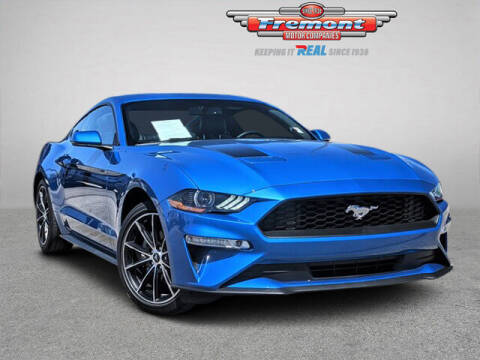 2020 Ford Mustang for sale at Rocky Mountain Commercial Trucks in Casper WY