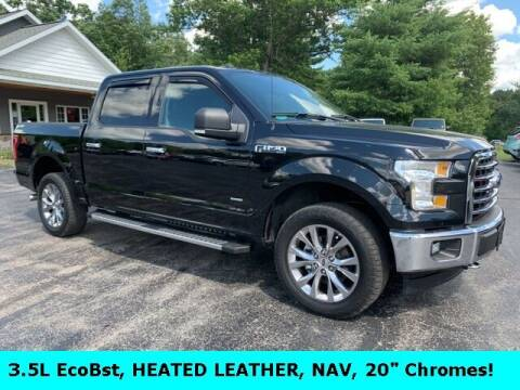 2017 Ford F-150 for sale at Drivers Choice Auto & Truck in Fife Lake MI