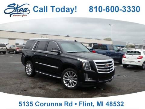 2020 Cadillac Escalade for sale at Jamie Sells Cars 810 - Linden Location in Flint MI