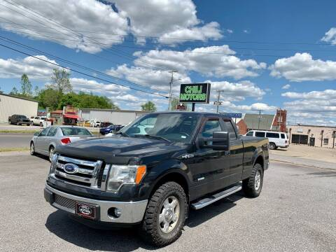 2011 Ford F-150 for sale at CHILI MOTORS in Mayfield KY