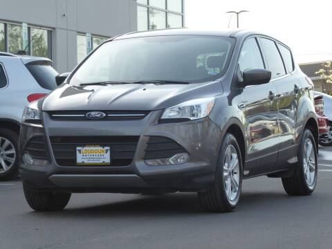 2014 Ford Escape for sale at Loudoun Used Cars - LOUDOUN MOTOR CARS in Chantilly VA