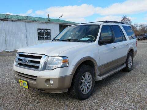 2014 Ford Expedition for sale at Low Cost Cars in Circleville OH