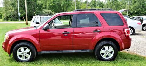 2011 Ford Escape for sale at PINNACLE ROAD AUTOMOTIVE LLC in Moraine OH