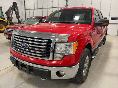 2010 Ford F-150 for sale at RDJ Auto Sales in Kerkhoven MN