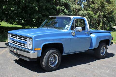 1981 Chevrolet C/K 10 Series for sale at Great Lakes Classic Cars & Detail Shop in Hilton NY