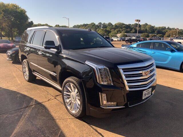 2015 Cadillac Escalade for sale at Gregg Orr Pre-Owned Shreveport in Shreveport LA