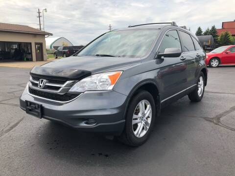 2010 Honda CR-V for sale at Mike's Budget Auto Sales in Cadillac MI