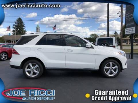 2018 Mercedes-Benz GLE for sale at Mr Intellectual Cars in Shelby Township MI